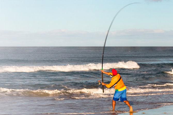 Marinemax panama city beach to host free pier beach and for Surf city fishing pier